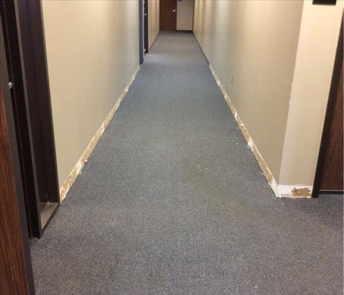 Commercial hallway cleanup After