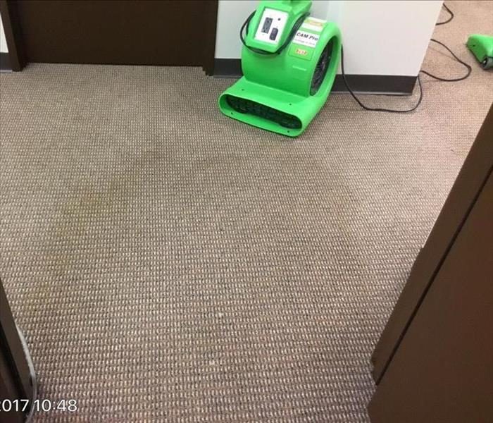 Commercial carpet clean Before
