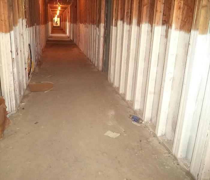 Mold Protection Applications